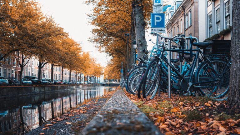 De barometer september 2021: Aantal faillissementen onveranderd op laag niveau